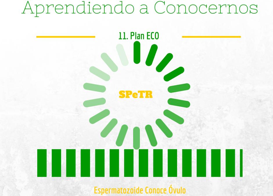 Plan ECO – Aprendiendo a Conocernos 11