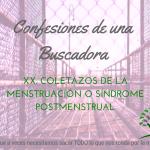 Yo no uso tampones – Confesiones de una Buscadora XXI