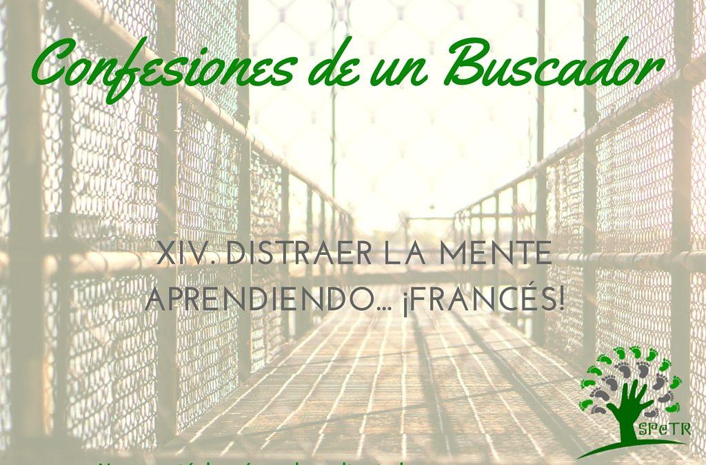 Distraer la mente aprendiendo… ¡Francés! – Confesiones de un Buscador XIV