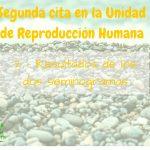 Segunda cita en la Unidad de Reproducción: 2 – Resultados seminogramas