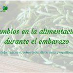 Cambios en la Alimentación durante el Embarazo: Antojos, Ascos y Dieta Sana y Equilibrada
