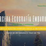 Tercera Ecografía – Eco de las 12 semanas