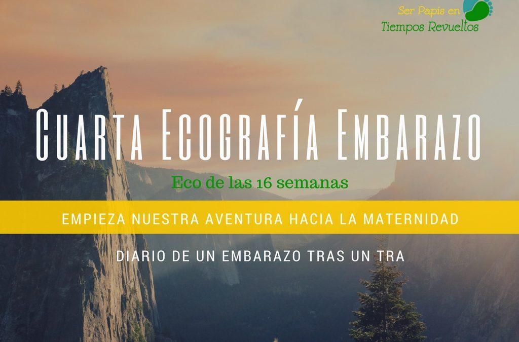 Cuarta Ecografía – Eco de las 16 semanas