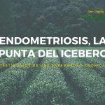 Endometriosis, la punta del iceberg: Testimonios de una enfermedad crónica