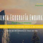 Ecografía Morfológica de las 20 semanas – Quinta Ecografía del Embarazo