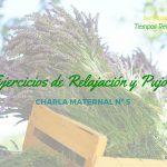 Ejercicios de Relajación en el parto y Pujos – Charlas Maternales 5