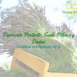 Depresión Postparto, Suelo Pélvico y Dudas – Charlas Maternales 6