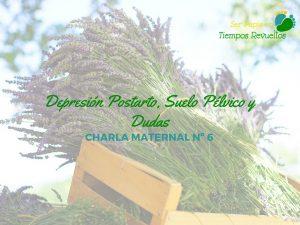 depresion-postparto-suelo-pelvico-charla-maternal