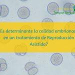 ¿La calidad embrionaria es determinante en un tratamiento de Reproducción Asistida?