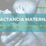Lactancia Materna: desde el cuarto al sexto mes de vida