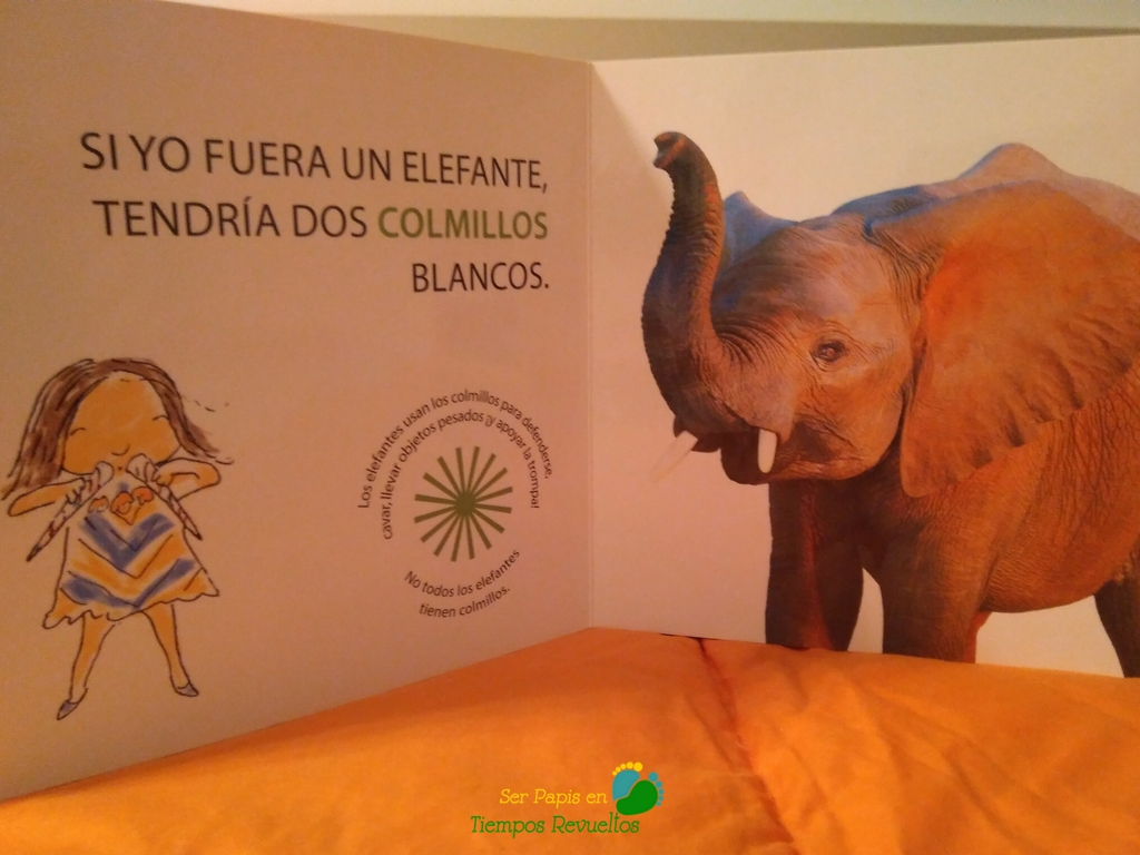 si_yo_fuera_un_elefante_interior